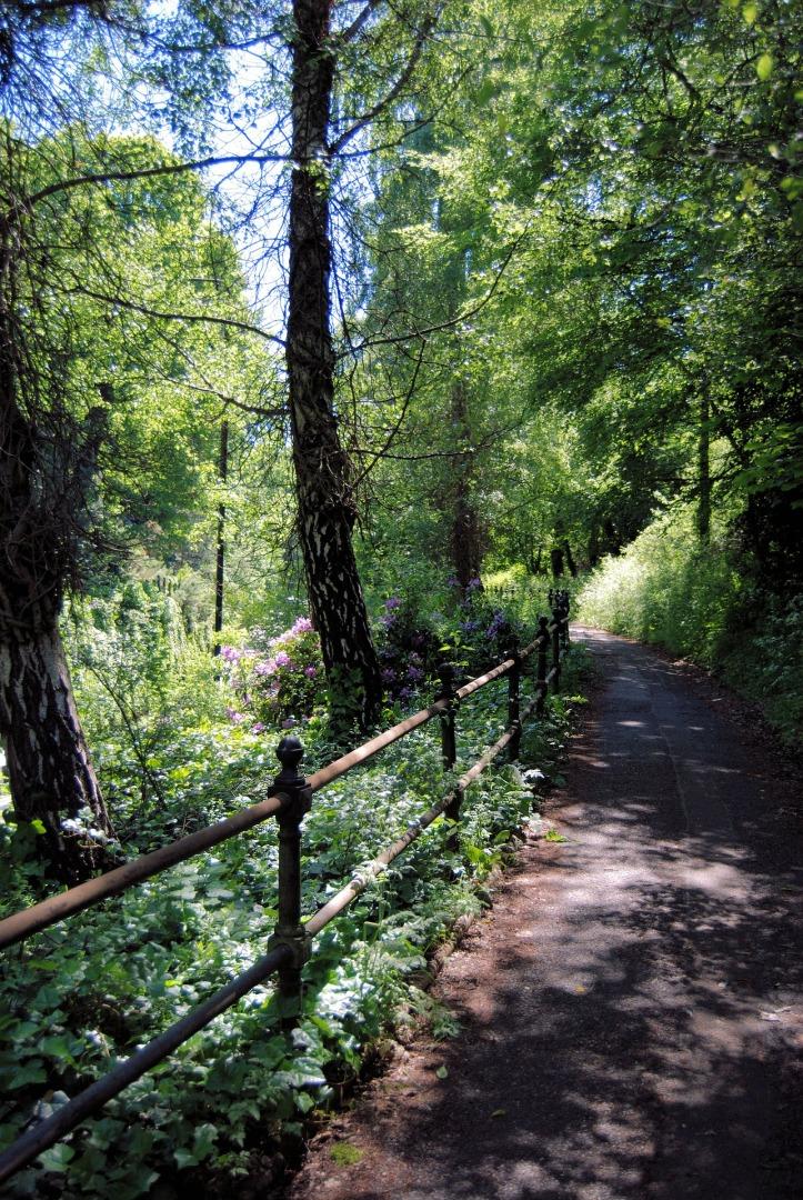 pathway-388287_1920