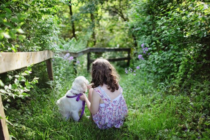 pexel dog and girlpexels-photo-193035