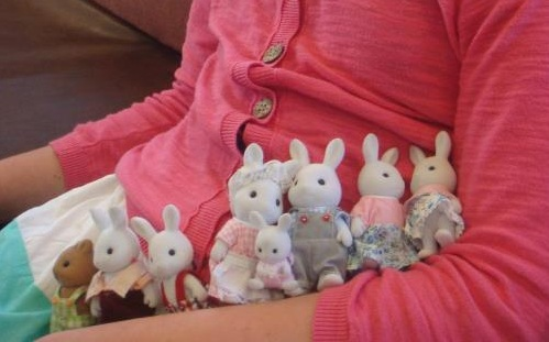 Sylvanians cropped
