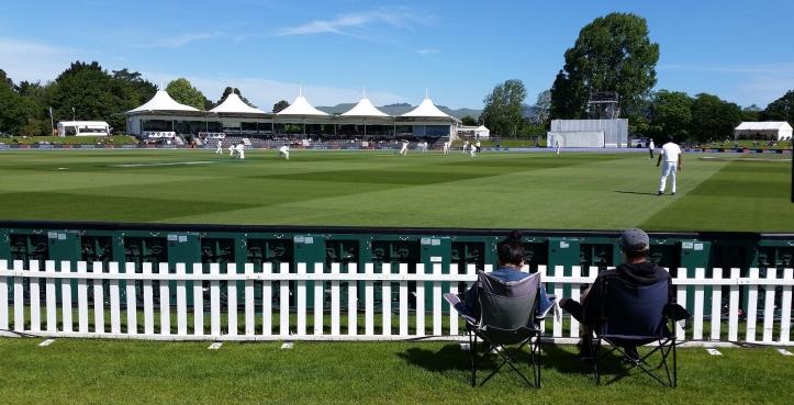 cricket-2511043_1920.jpg